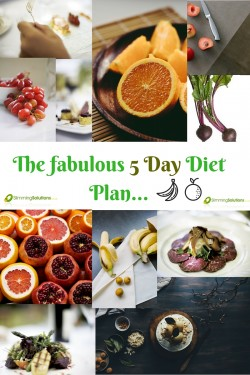 The Fabulous 5 Day Diet Plan